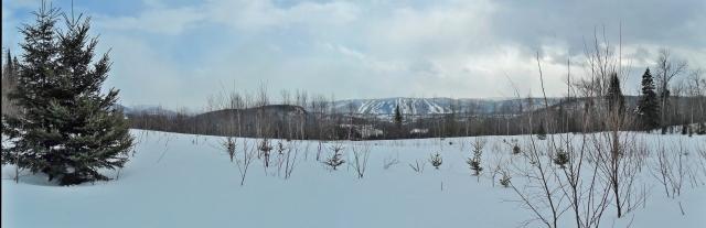SAM_4505 Panorama
