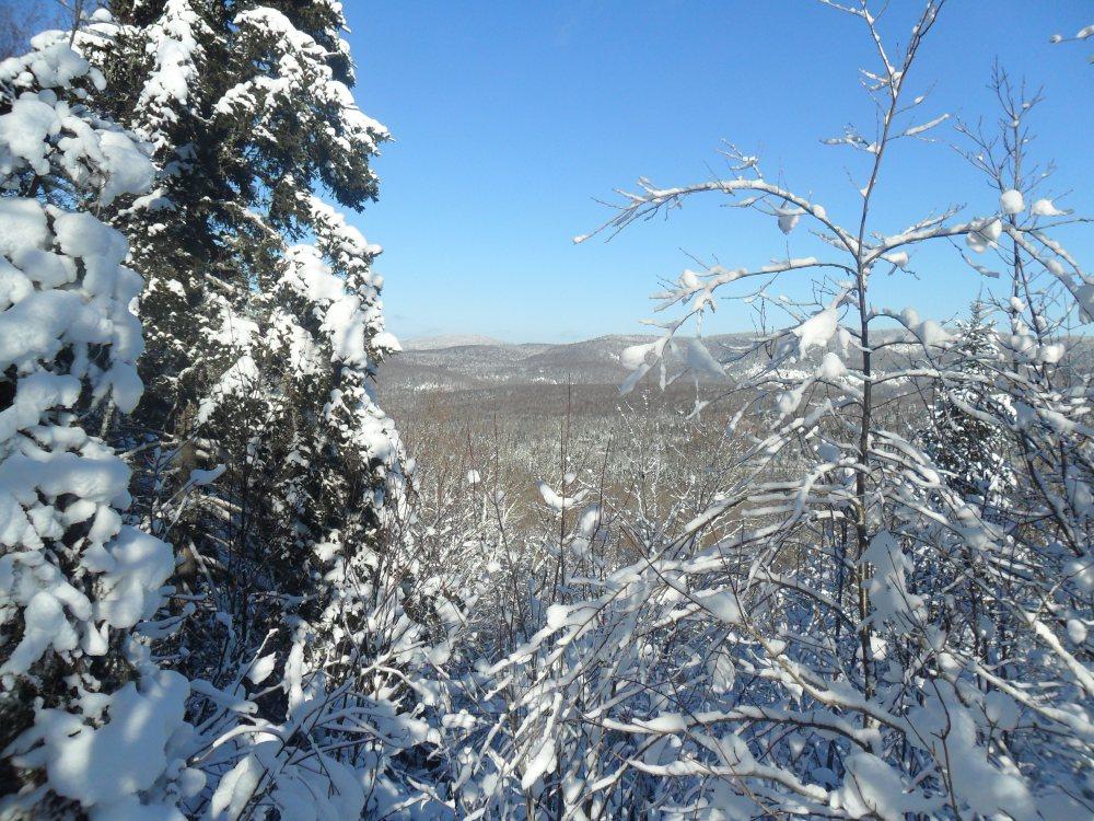 Le Mont et la boucle du lac Sombre de St-Donat le 20 Jan 2015 (2/3)